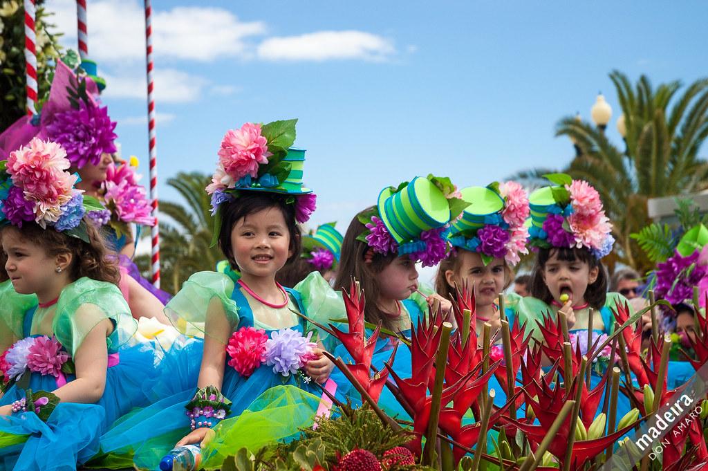 Flower Festival cover image