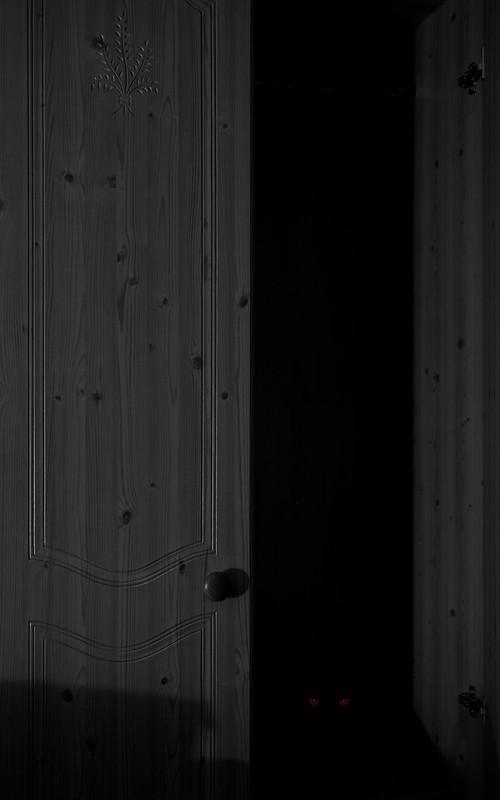The Closet by Night