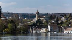 2016-04-10-144527_Schaffhausen_Auf dem Rhein