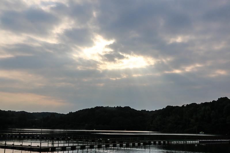 2014-09-23_00472_巾着田.jpg