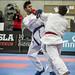 RIG 2016 - Taekwondo og/and Karate