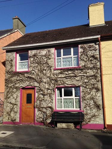 door creeper bench pavement hbm iphone5 2016onephotoeachday newmarket cork ireland irish bluesky wall