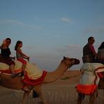 Viajefilos en el desierto de Abu Dhabi 09