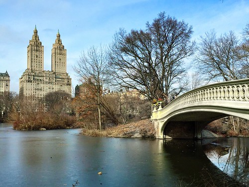 city nyc bridge winter newyork nature buildings colours centralpark manhattan bowbridge iphone iphone6