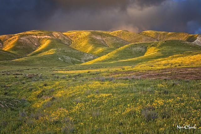 Carrizo Plain, Kern County, California