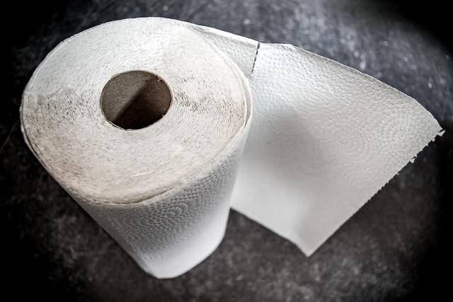 (067/366) Towel Portrait