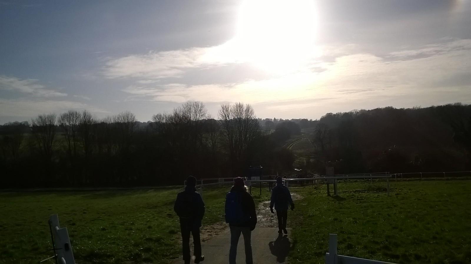 Into the winter sun descending from Epsom Down