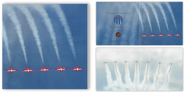 the Canadian Forces Snowbirds . . .