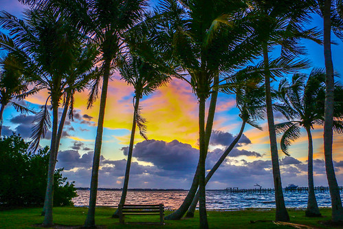 morning trees sky usa sun nature colors clouds palms outside outdoors dawn colorful florida cloudy stuart palmtrees indianriver sunris sewellspoint parkstuart
