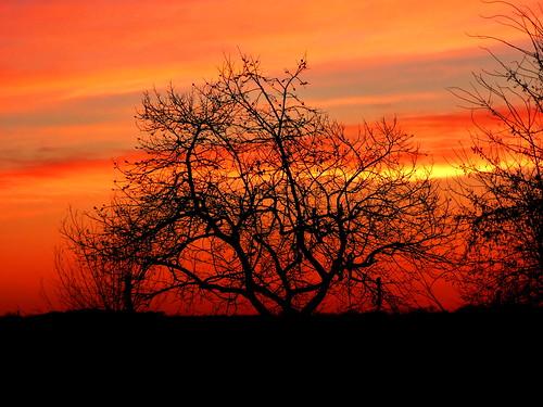 tramonto aragrande