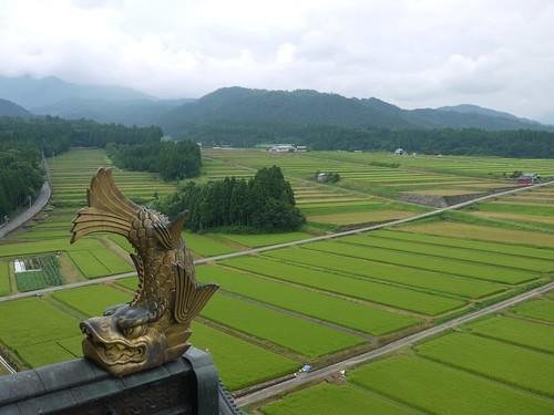 castle japan view fields 日本 outlook fukui 城 prospect vantage 福井 越前大野