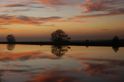 autumn sunset sky tree water clouds reflections landscape countryside duck october quote reservoir lancashire explore longridge ribblevalley toplodge tootleheights