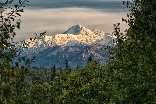 Earth's Tallest Mountain