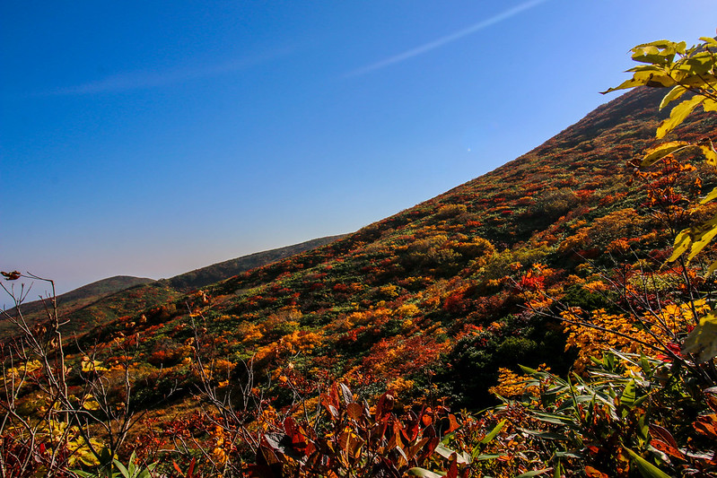 2014-09-28_00315_栗駒山.jpg