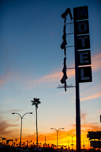 sunset arizona usa tree neon unitedstates fav50 unitedstatesofamerica motel palmtree diver mesa fav10 fav25 starlitemotel fav100