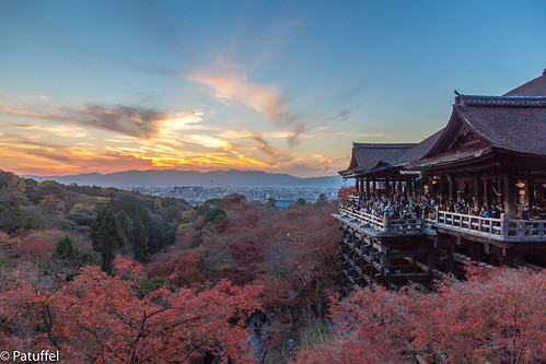 kiyomizudera temple 清水寺 kyoto during sunset autumn with red leaves japan leaf