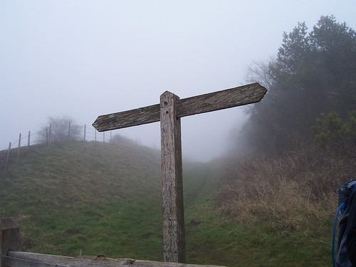 Completely Blank Signpost | by Bods