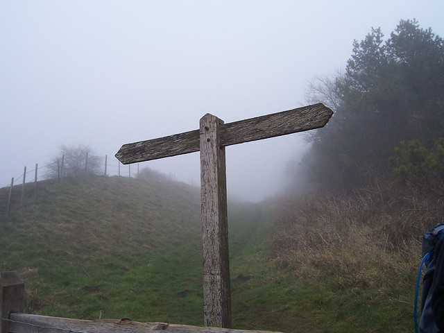 Completely Blank Signpost