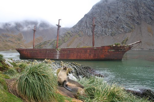Wreck of the Bayard