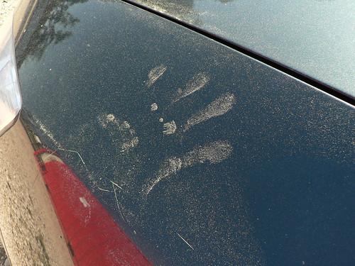 pollen hand