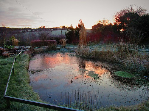ireland irish reflection field grass weather sunrise fence garden landscape pond cork scenic newmarket canonixus170