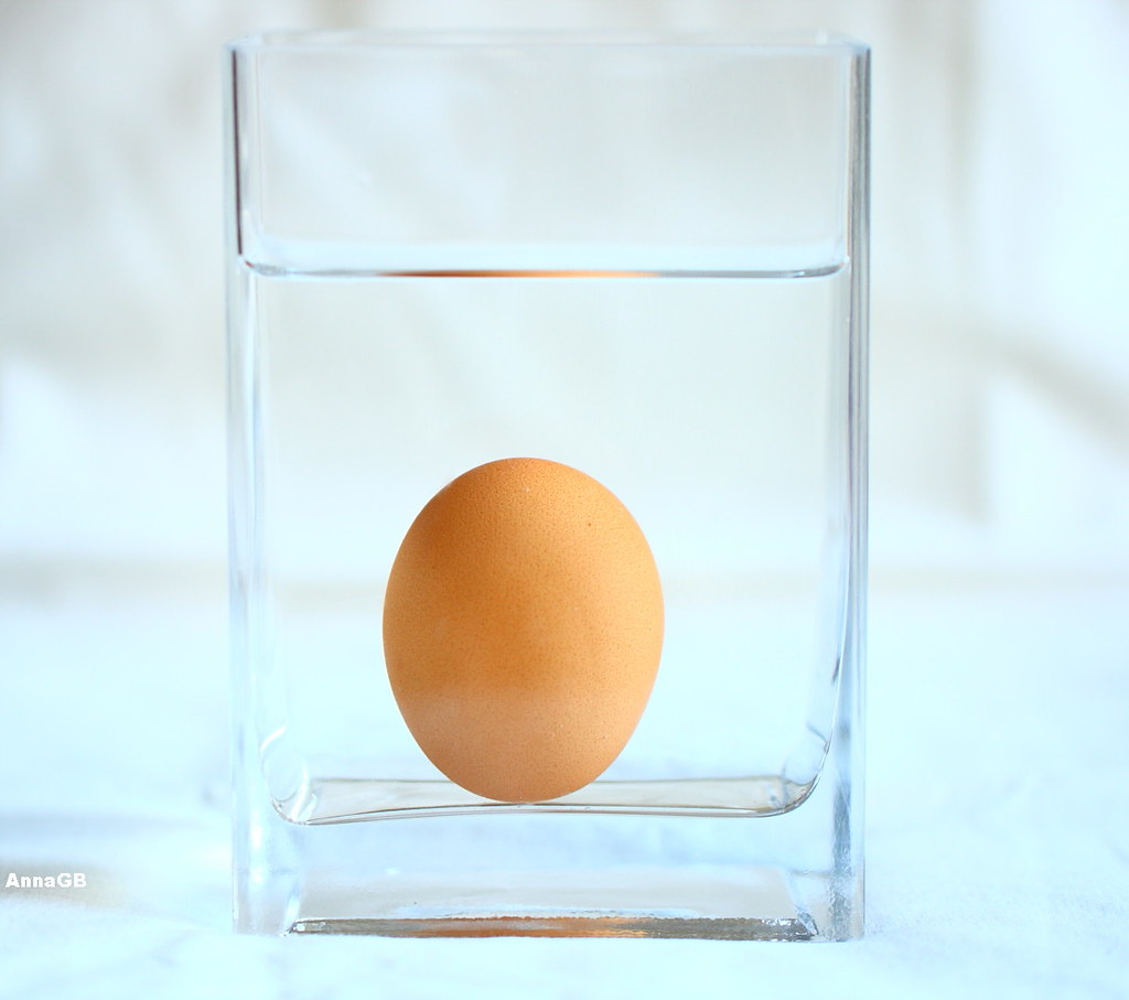 Ou (huevo, egg)