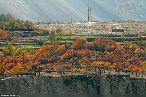 trees pakistan mountains building canon landscape geotagged rocks structures sigma tags location elements vegetation fields greenery hunza aliabad gilgitbaltistan sigma150500mmf563apodgoshsm imranshah canoneos70d gilgit2