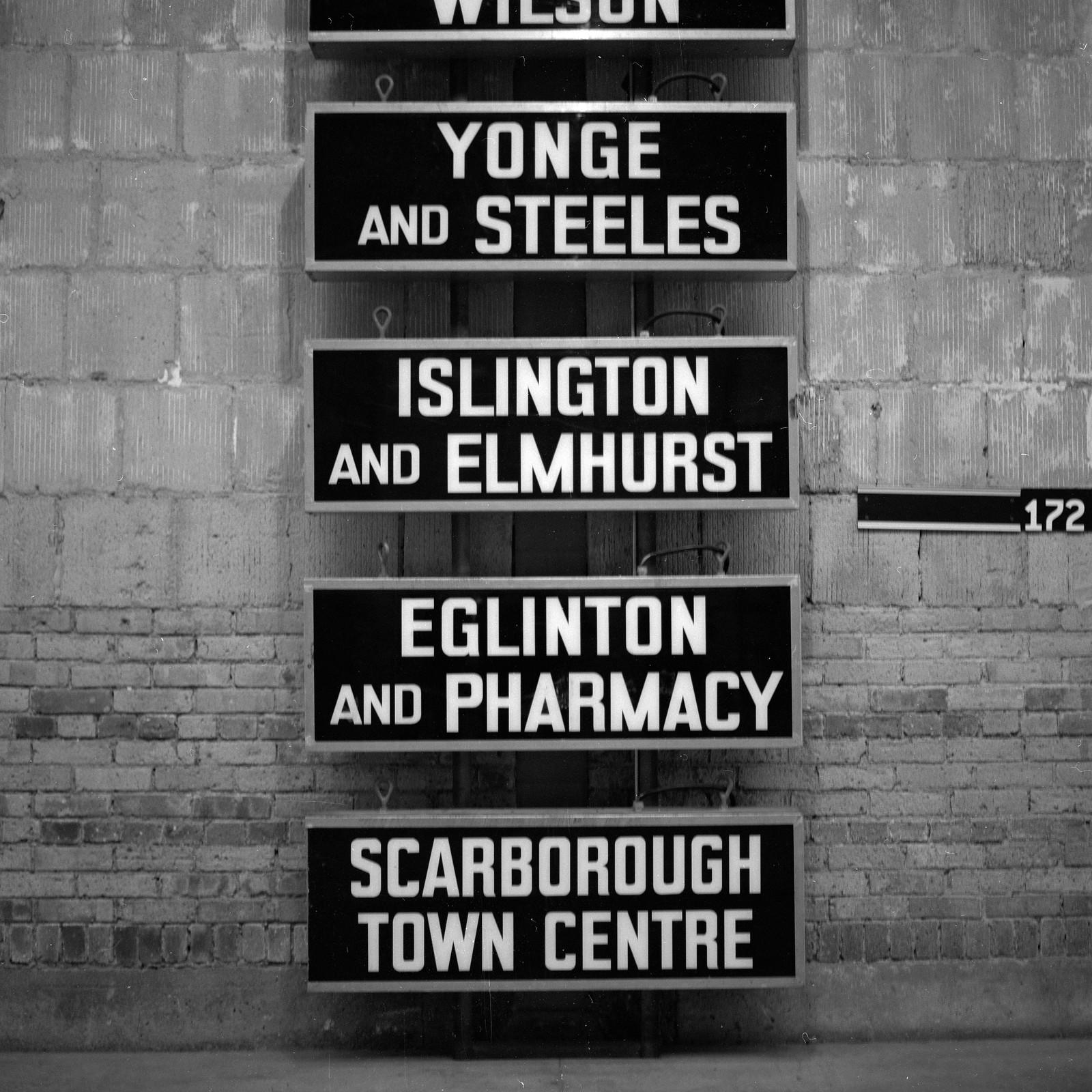 Toronto Film Shooters - The Hangover