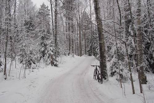 park bicycle finland helsinki path central mtb 29er polkupyörä keskuspuisto 2016bike180