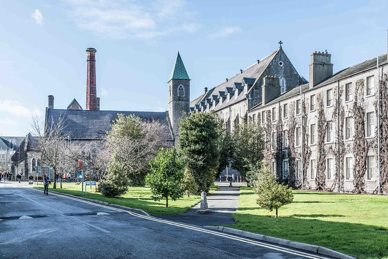 I RETURN TO ST. PATRICK'S COLLEGE [MAYNOOTH]-112046