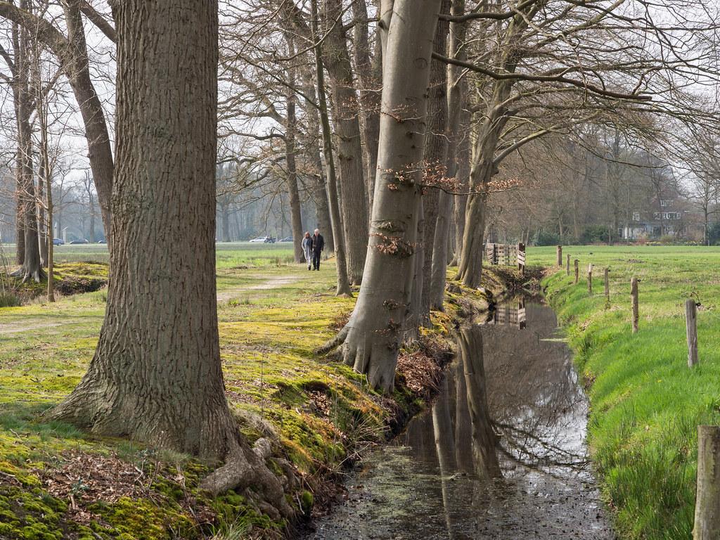Vennebroek