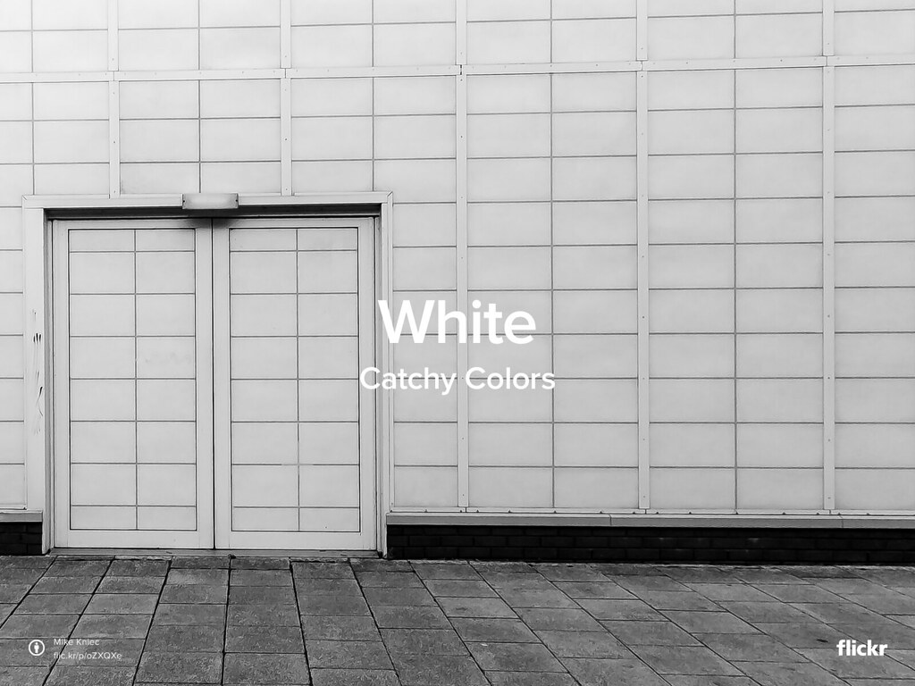 CatchyColors: White
