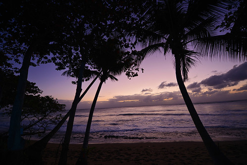 ocean trees sunset sky sun reflection beach clouds puerto sand waves purple angle puertorico dusk wide footprints palm rico caribbean ultra rincon 14mm