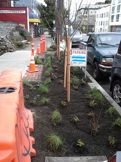 2016.0302 front landscaping