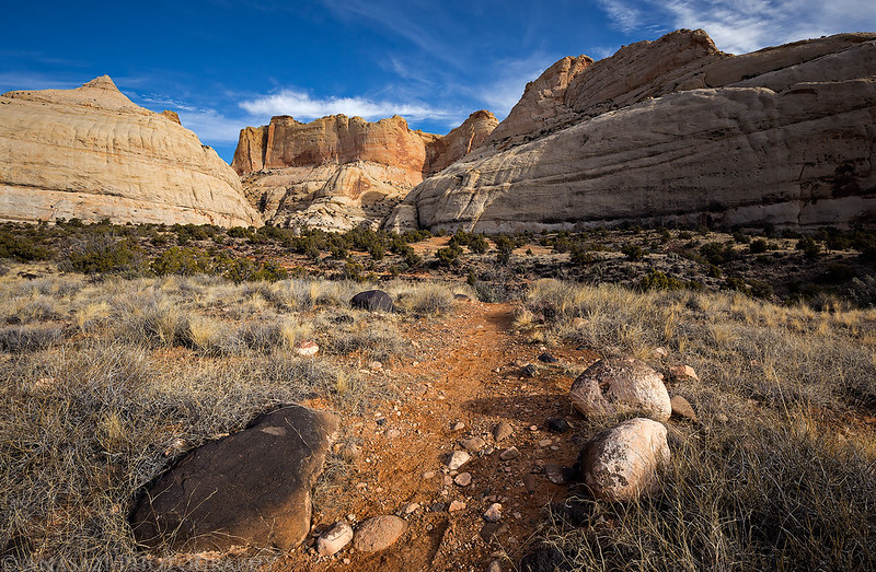 Navajo Knobs Trail
