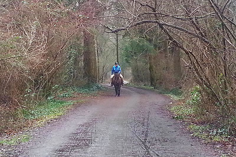 Lochside Trail in Central Saanich, Saanich Peninsula, Victoria, Vancouver Island, British Columbia