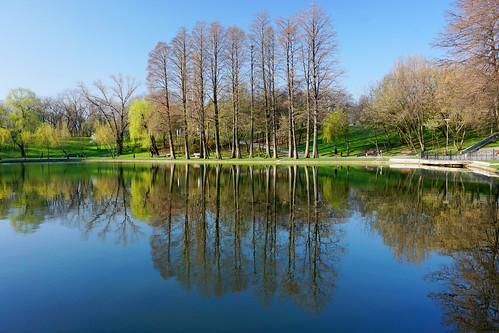 trees lake nature colors reflections romania titan bucharest bucuresti ior sector3