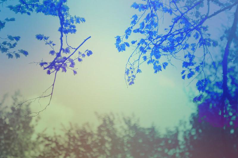 blur-dreamy-texture-texturepalace-80