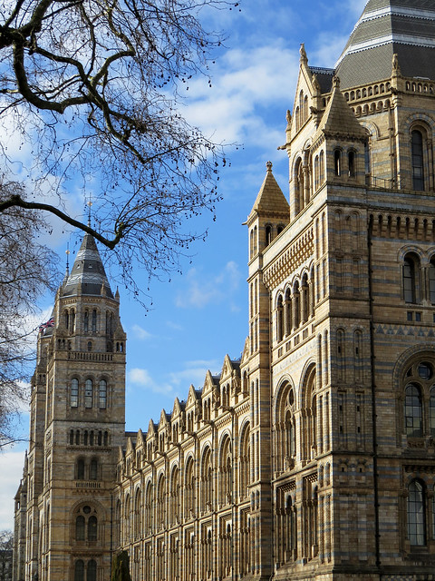 The Natural History Museum (2)