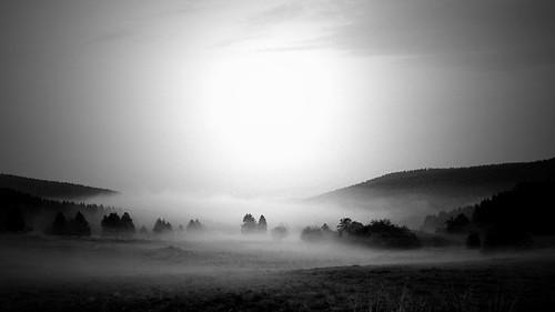 monochrome bw blackandwhite schwarzweis landscape nature natur morgen morning sunrise sonnenaufgang nebel fog mist thuringia thüringen caledoniafan nikon nikoncoolpixl820 landschaft explore explored vignette
