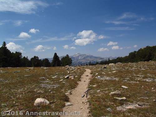 Stough Creek Trail in Stough Creek Pass in the Wind River Range of Wyoming