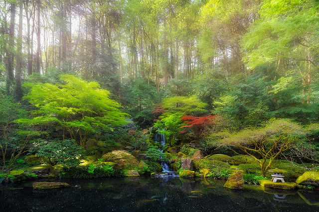 Waterfall at Lower Pond in Japanese Garden