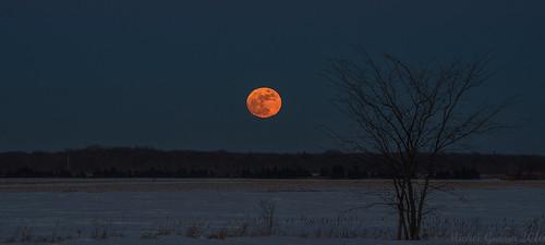 ca sunset © moon canada nature lune exterior québec extérieur qc mirabel winteractivity activitédhiver michelguérin tamron150600mm tousdroitsréservésallrightsreserved nikond750 lightoomcc rangsaintmarie