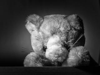 get well kitten | by jkehoe125