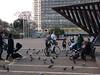 Tel Aviv – Rabinovo náměstí, foto: Petr Nejedlý