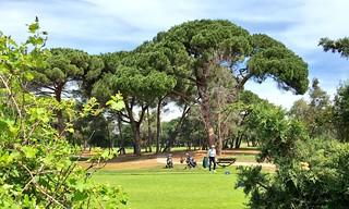 Vue sur le Golf Old Course de Mandelieu