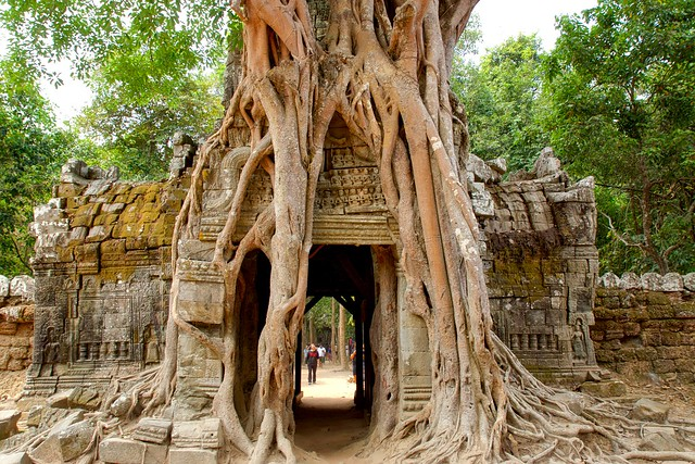 East gate of Ta Som temple with strangler fig tree near Siem Reap in Cambodia