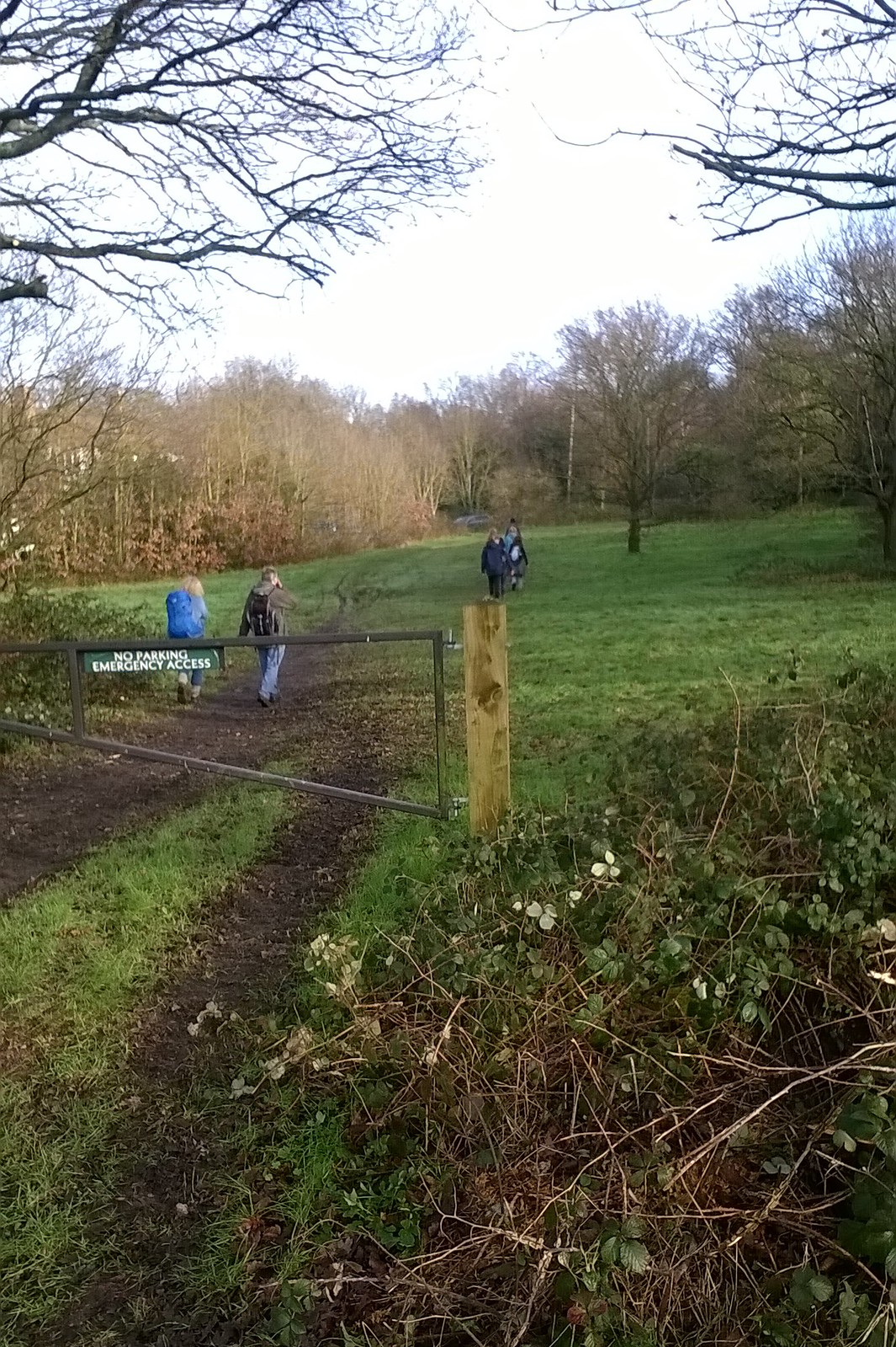 Saturday walkers on the Epping Forest trail