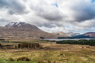 Loch Tulla View   by Stevie J Brown Photography
