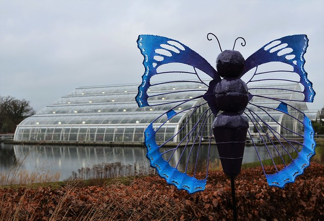 The Glasshouse, RHS Wisley